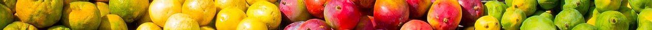 Hypotoxische Ernährung bei chronischen Krankheiten